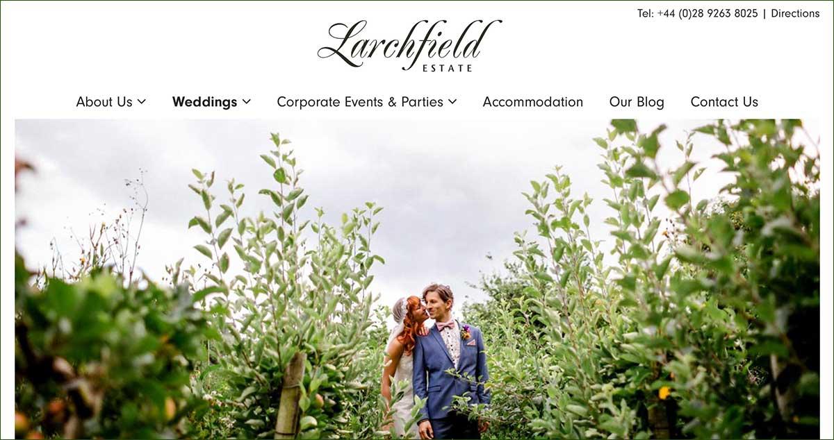 Screenshot of the Larchfield Estate Lisburn website