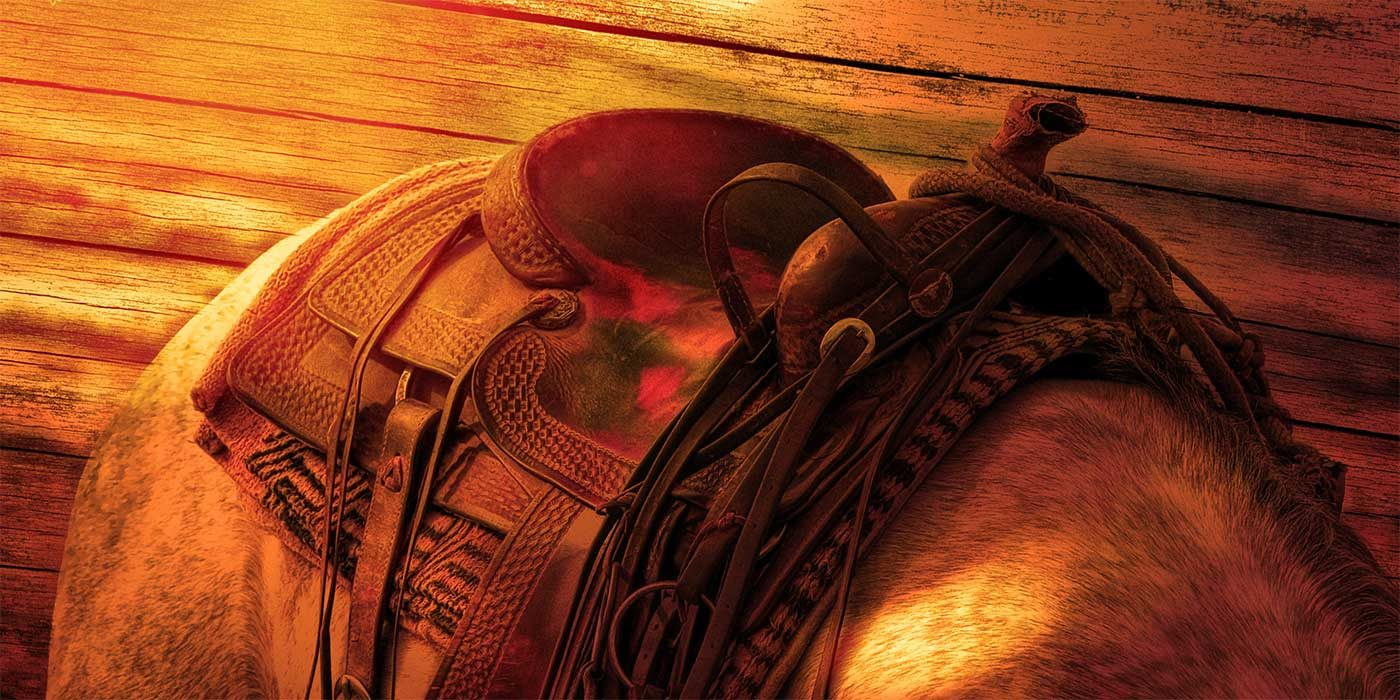 Picture of a horses saddle