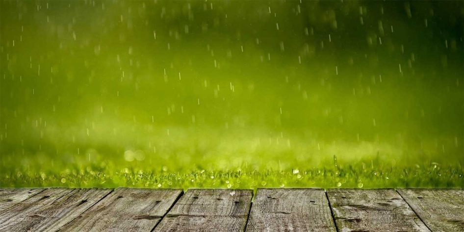 Photo of rain on a wooden decking