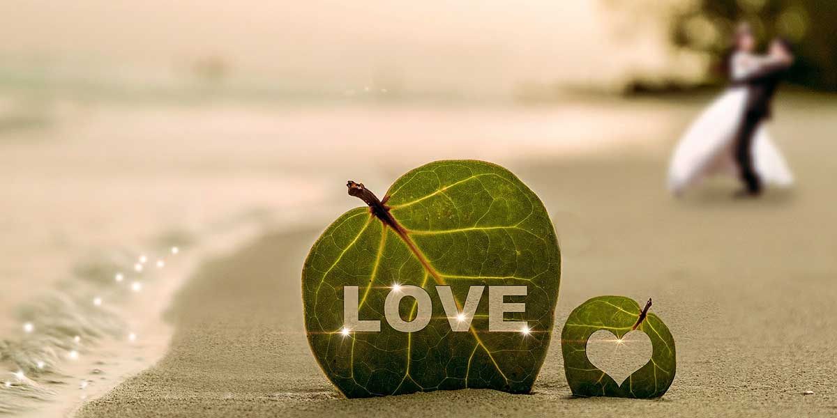 Photo of a bride and groom on a beach with a leaf with the word love cutout of it