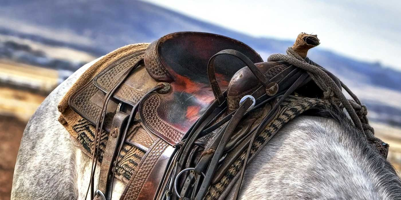 Photo of a leather horse saddle