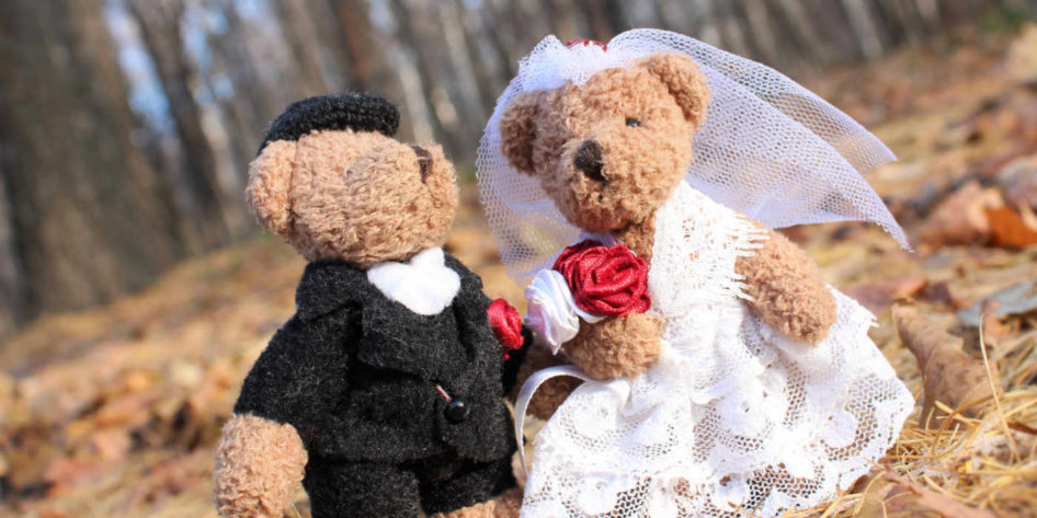 Photo of two teddies dressed as a bride and groom