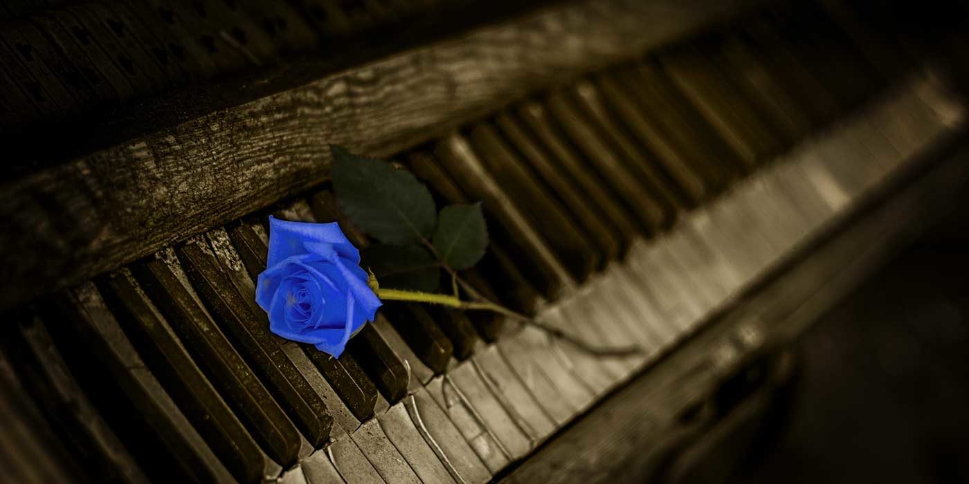 Photo of a blue rose on an old piano